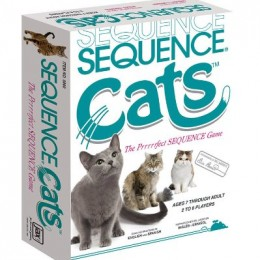 Sequence cats gatos
